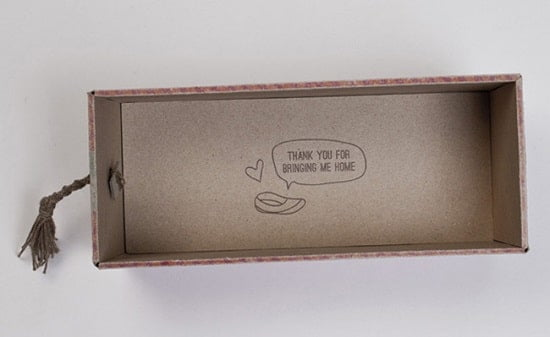 packaging-design-shoe-5c