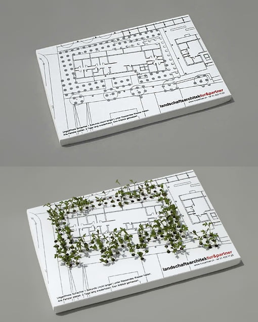 amazing-business-card-concept-for-a-landscape-architect